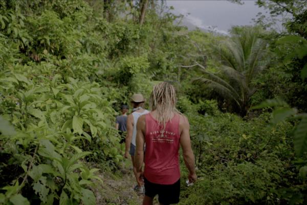 Barbados Jungle Walk